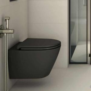 Seinapealne wc pott FEELING RIMLESS 52 (prill-lauaga), must matt, RAK